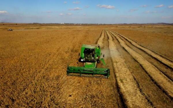 аренда сельхоз земли в ростовской области