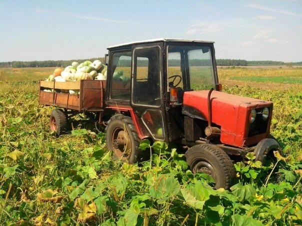 Самодельный трактор своими руками видео фото 561